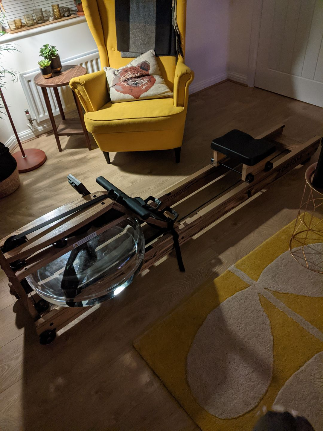 Topiom Indoor rowing machine for sale photo review