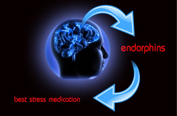 endorpins best stress medication