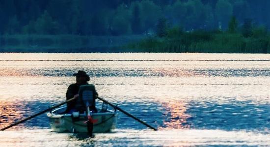 Top 6 quiet rowing machines